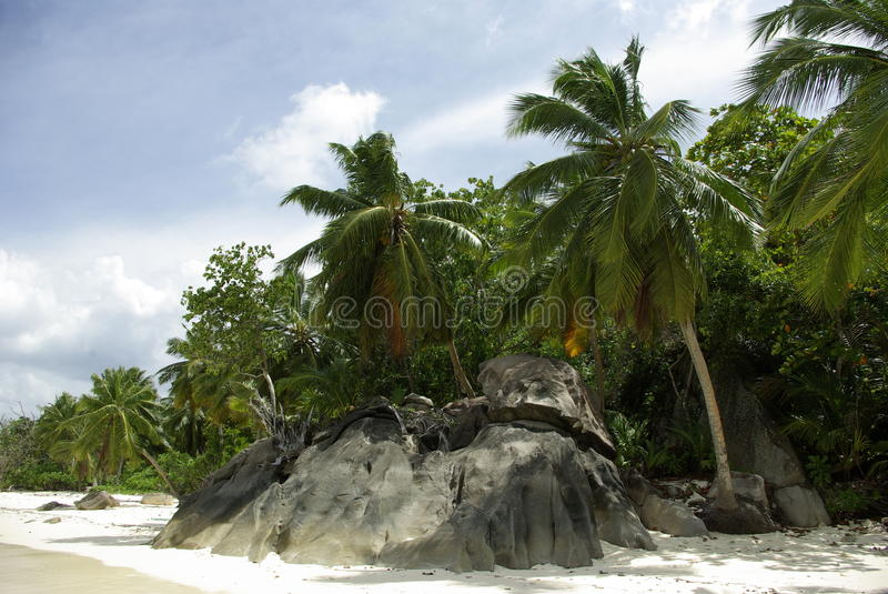 Beach in the Seychelles stock photography