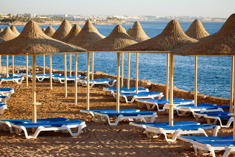 Beach in Sharm al-Sheikh. Beach with blue sunloungers in Sharm al-Sheikh royalty free stock image