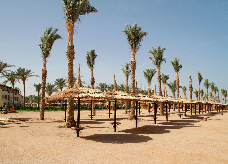 Download Beach of Sharm el Sheikh stock photo. Image of leisure - 13569824