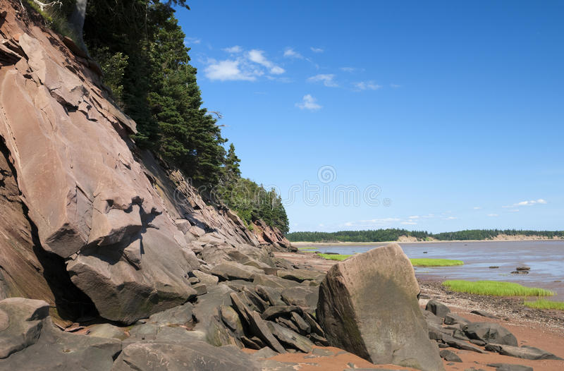 Download Beach Shoreline stock photo. Image of landscapes, eroded - 29632598