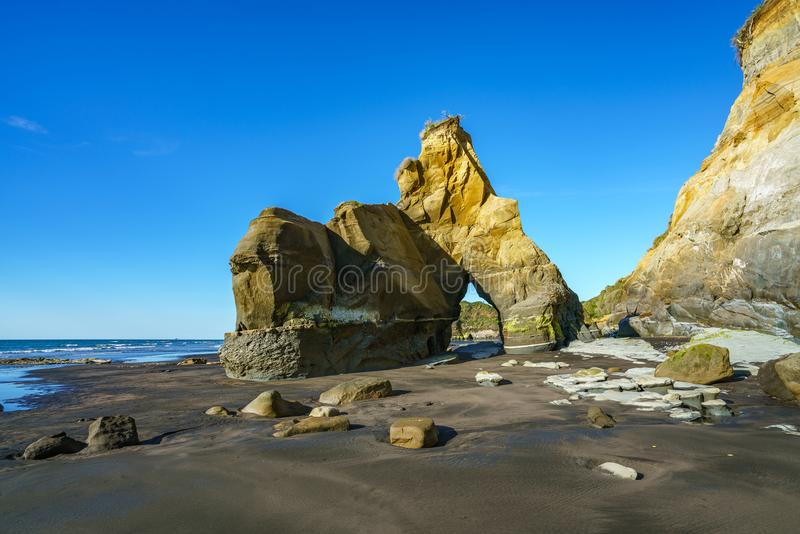 On the beach, 3 sisters and elephant rock, new zealand 57 royalty free stock photo