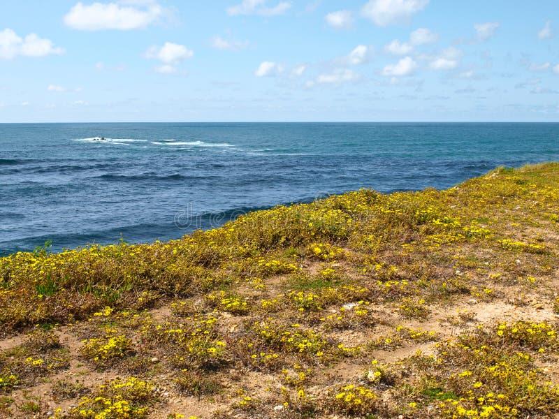 Beach spring bright landscape stock image
