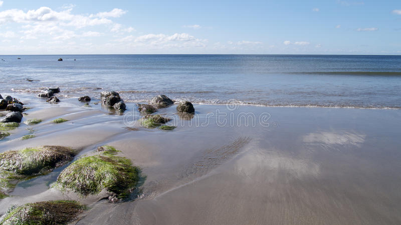 The beach at springtime royalty free stock image