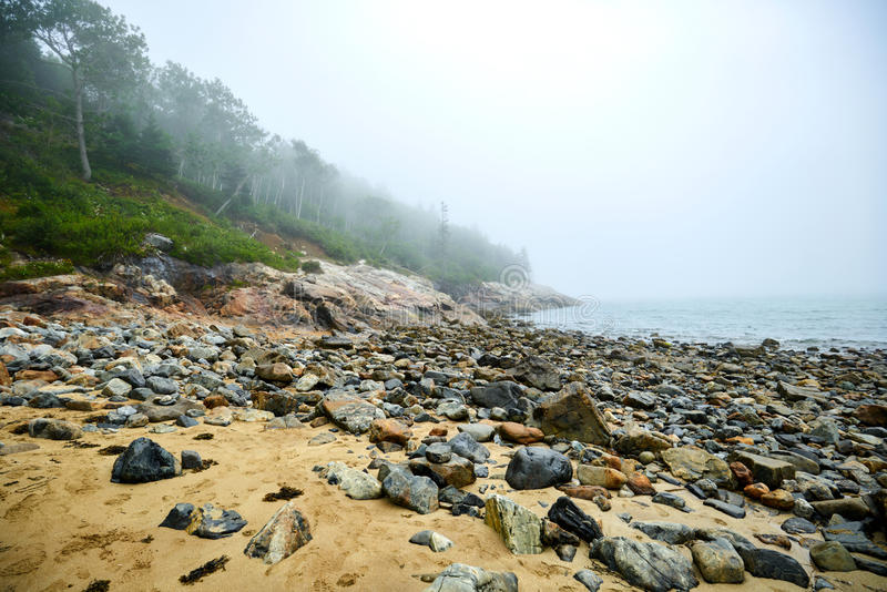 Beach with stones and trees. Cloudy Beach at Acadia National Park with stones, trees and the ocean in the background stock photography