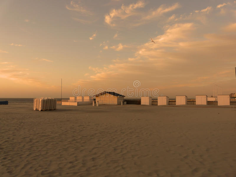Download Beach At Sunrise Stock Photo - Image: 20367690