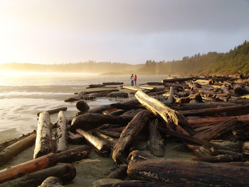 Download Beach sunset stock photo. Image of british, travel, columbia - 4375678