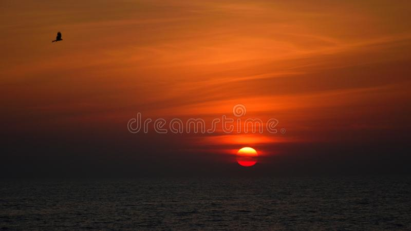 Beach sunset kozhikode calicut india vogel prachtige kleur orange sun sea cloud royalty-vrije stock fotografie