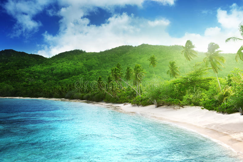 Download Beach In Sunset Time On Mahe Island Stock Photo - Image of nature, jungle: 30809836