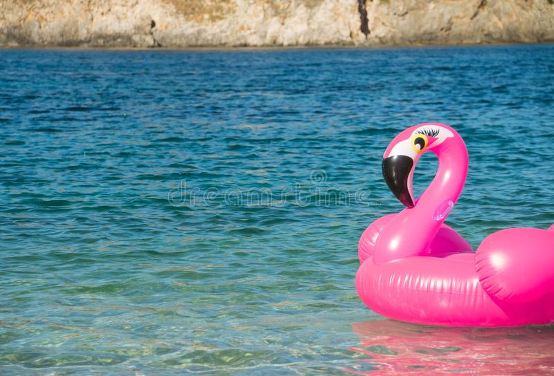 Swim ring in the shape of a pink flamingo on the water near the beach,water background.Fancy swim ring.Summer holiday royalty free stock image