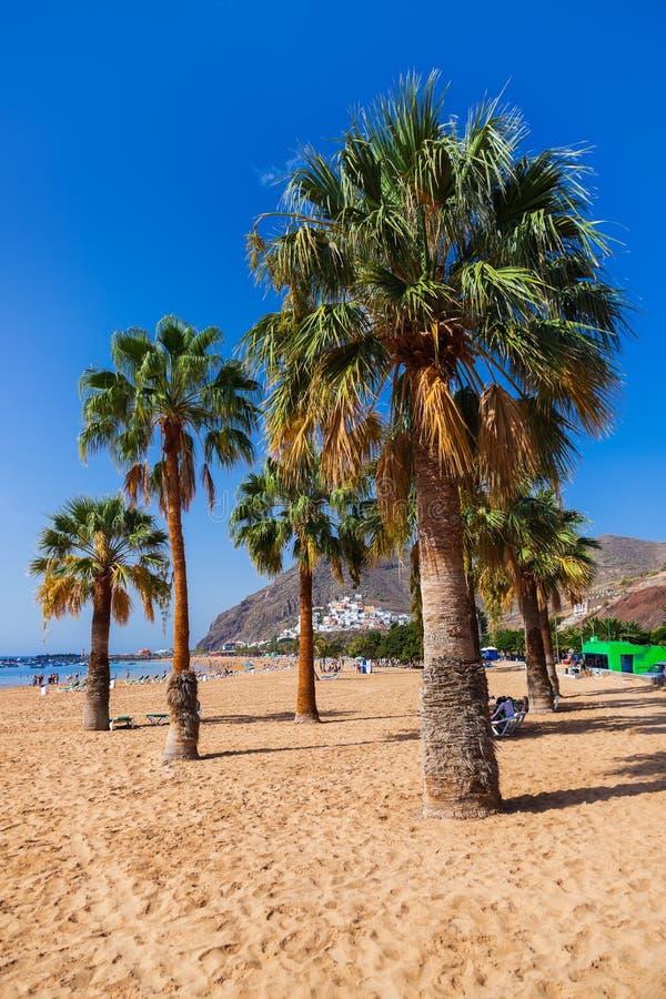 Download Beach Teresitas In Tenerife - Canary Islands Stock Image - Image: 33566103