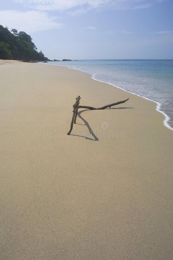 The beach of thailand