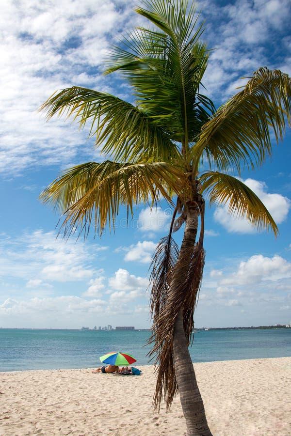 Beach Time stock image