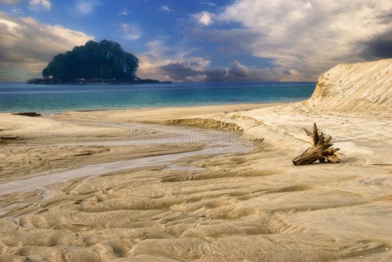 Download Beach of Tioman stock image. Image of palm, seascape, beachfront - 5924775