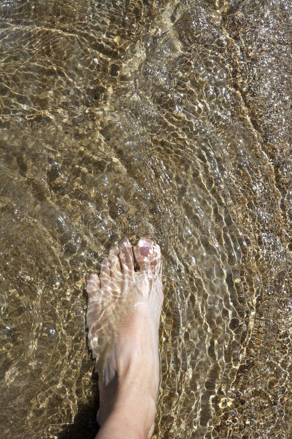 Download Beach Tourist Feet Walking On Shore Shallow Water Stock Photo - Image: 15919628