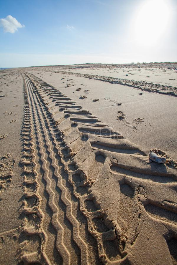 Beach tractor tire track in sand. Perspective and vanishing point. Tread marks left by industrial vehicle leading into the distance stock photo