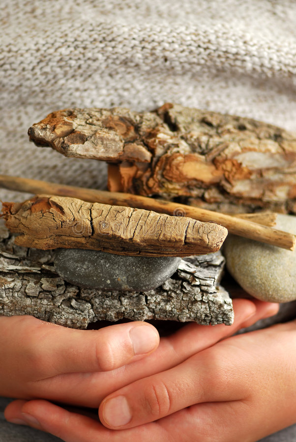 Download Beach treasures stock image. Image of body, game, driftwood - 2296569