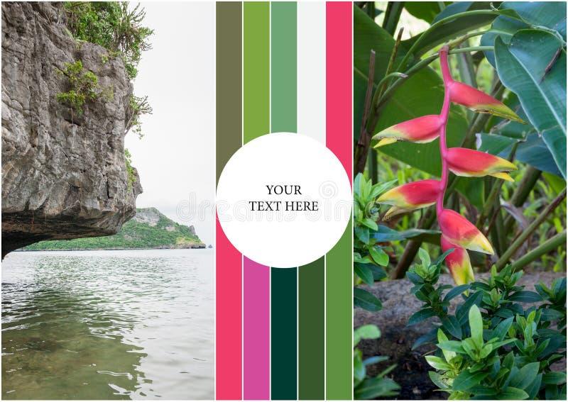Beach on tropical island. Flowers. Collage. Beach on the tropical island at Thailand. Flowers. Collage stock image