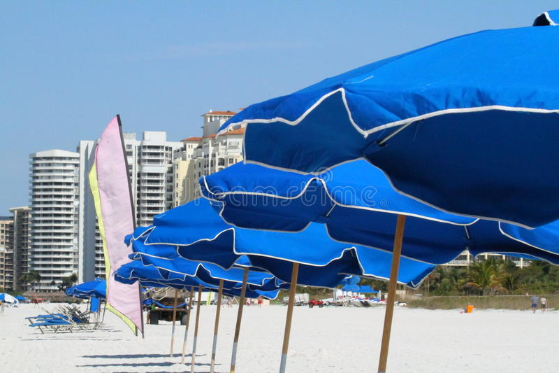 Download Beach umbrellas stock photo. Image of shoreline, shade - 23429862