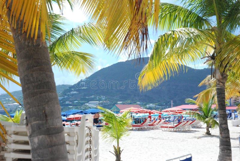 Beach umbrellas. Carribean beach scene with palm trees stock photos