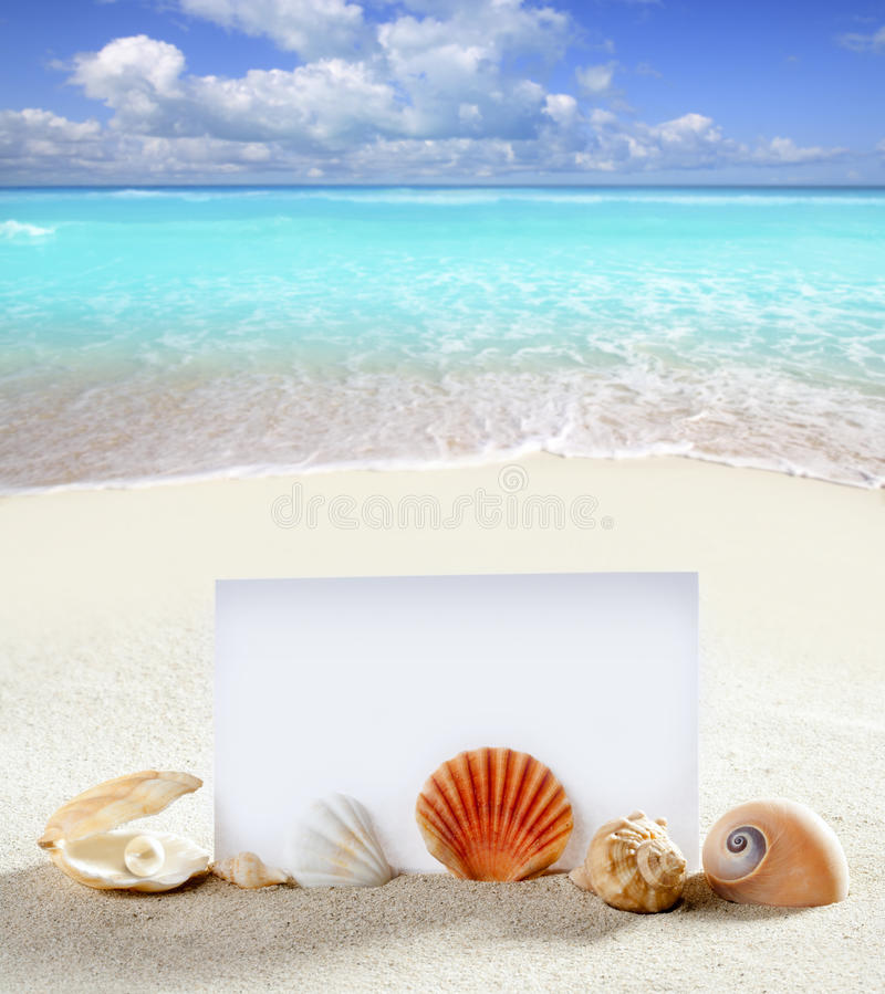 Beach vacation sand pearl shells snail blank paper. Beach vacation concept blank paper in white sand beach with pearl shells and sea snail stock images