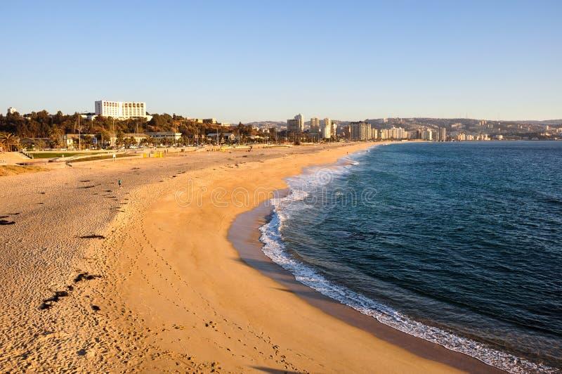 Beach at Vina del Mar, Chile.  royalty free stock images