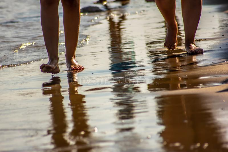 Beach, walk along the shore. photograph portraying the legs on Jesolo beaches. the water on the shore reflects them creating a mi. Rror effect royalty free stock images