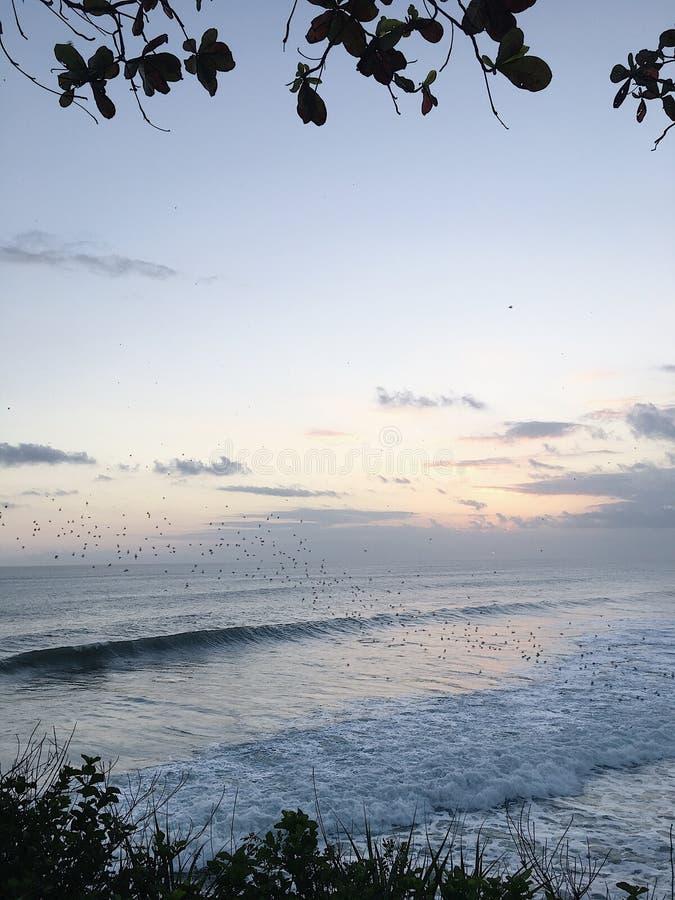 Beach waves royalty free stock photo