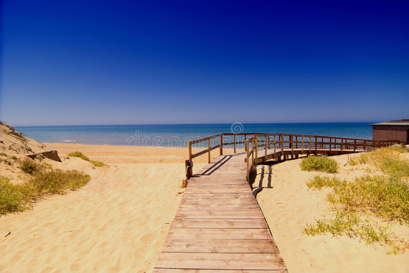 Download Beach way stock photo. Image of vacation, path, wood - 12961614