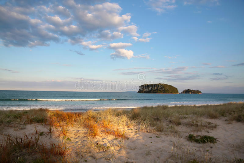 Beach at Whangamata royalty free stock photography