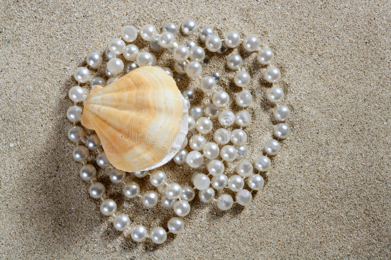 Beach White Sand Pearl Shell Macro Stock Images