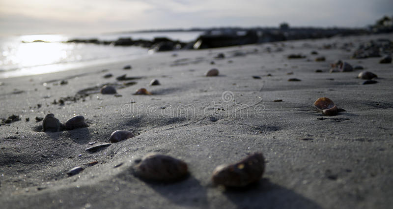 Beach in winter stock image
