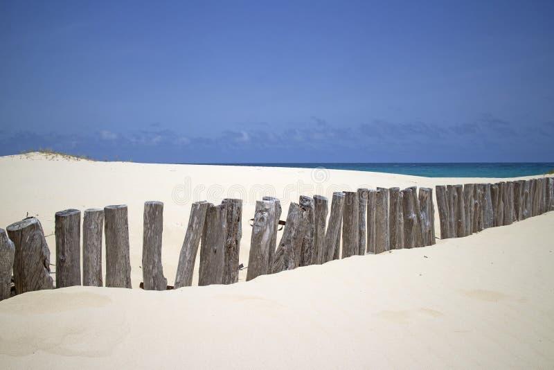 Beach wood fence royalty free stock image