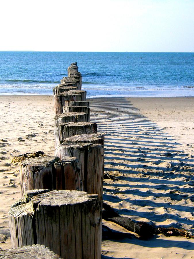 Beach with wooden poles. Sea shaded wooden poles on a line royalty free stock photo