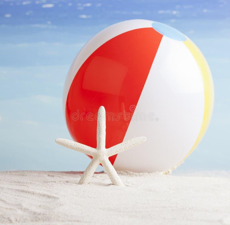 Beachball et étoiles de mer, fond de vacances d'été images stock