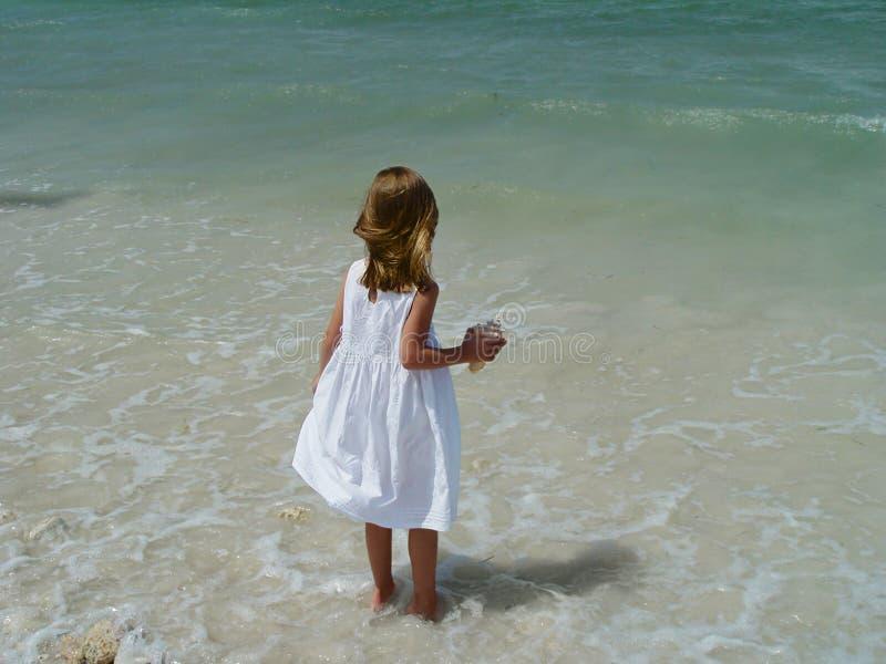 beachcomber 2 little royaltyfri foto