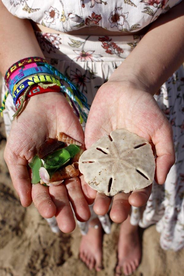 Beachcombing atesora - el d?lar de arena, c?scaras y el vidrio de la playa imagen de archivo libre de regalías