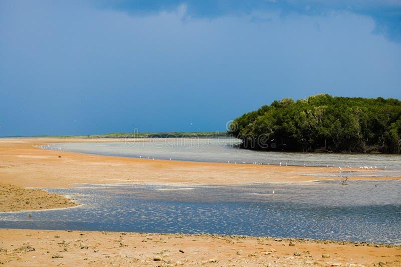 Coastal. Beaches Coastal Reserves Storm inland stock image