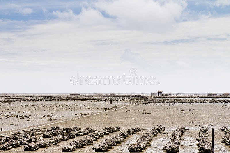 Download Beaches, Rocky Areas And Sea. Stock Photo - Image: 21806684