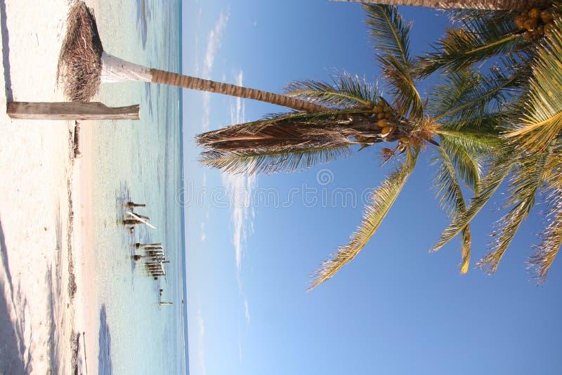 beachfront maya πλευρών ιδιοκτησία στοκ φωτογραφίες
