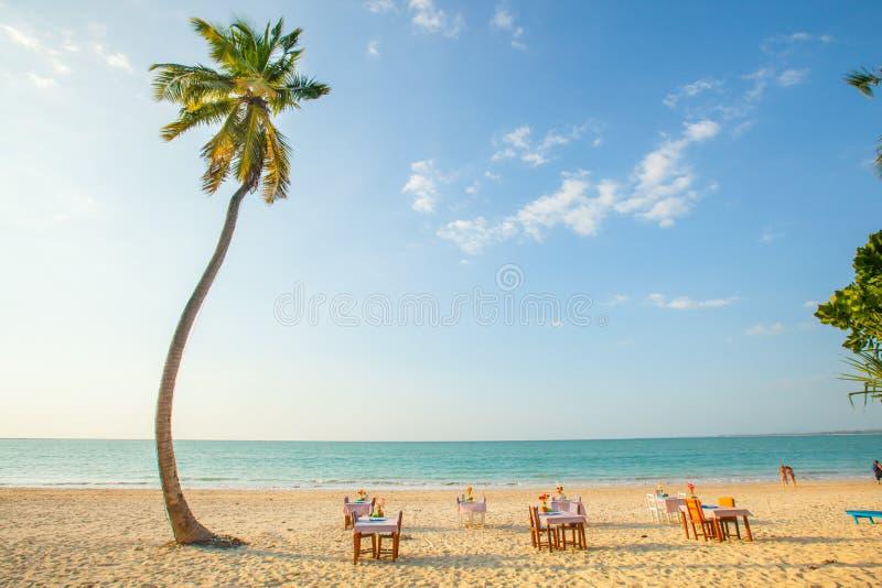 Beachfront restaurant royalty free stock photos