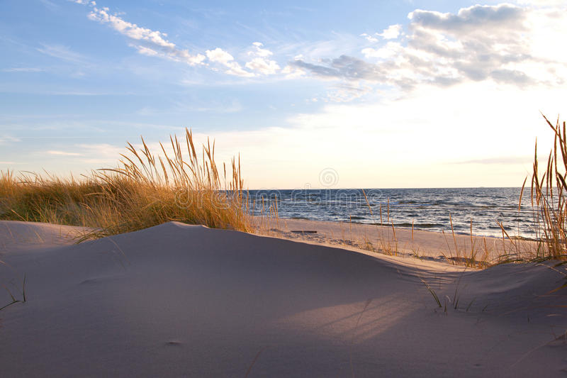 Beachgrass on the Lakeshore in Michigan. Gold hued dune grass reflects the late day sun on the Lake Michigan shoreline royalty free stock photos