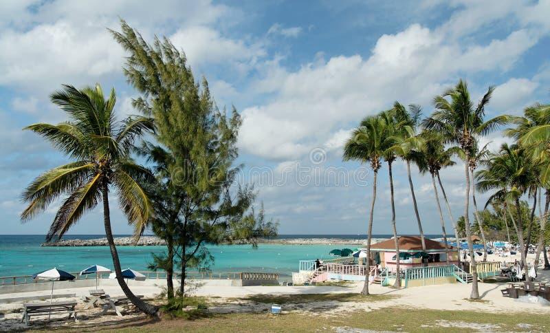 beachlife加勒比 库存图片