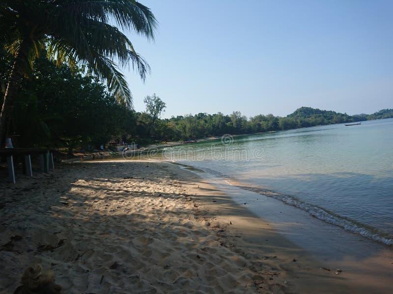 Beachlife imagenes de archivo