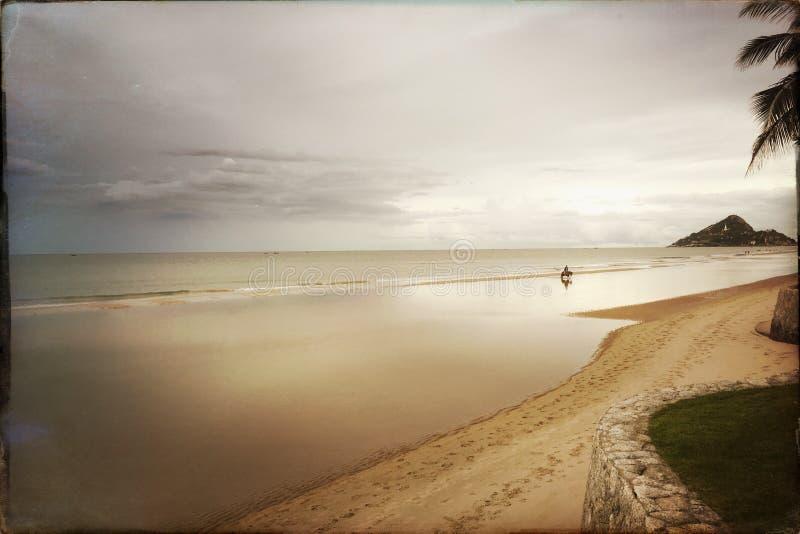 Beachscape stock afbeelding