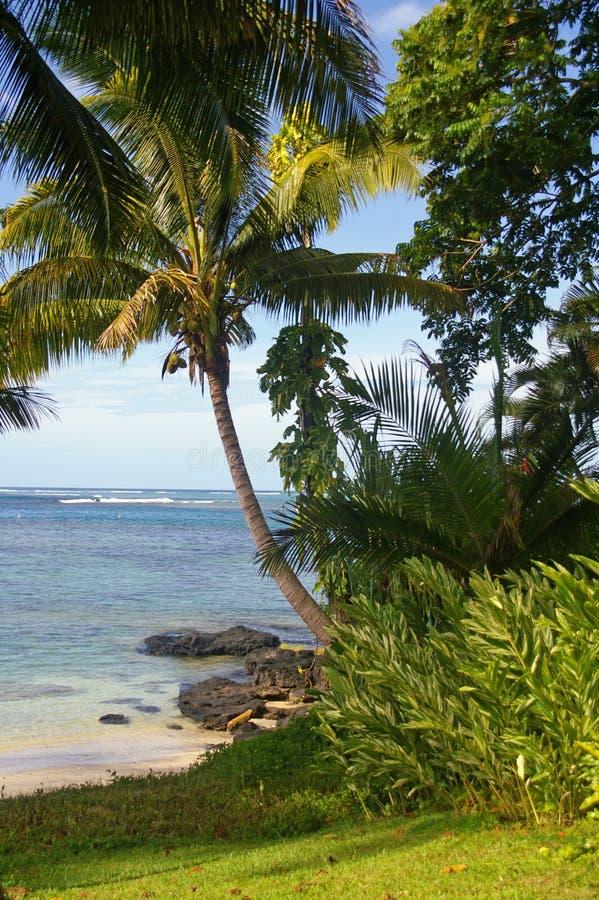 Beachscape du Samoa-Occidental photographie stock