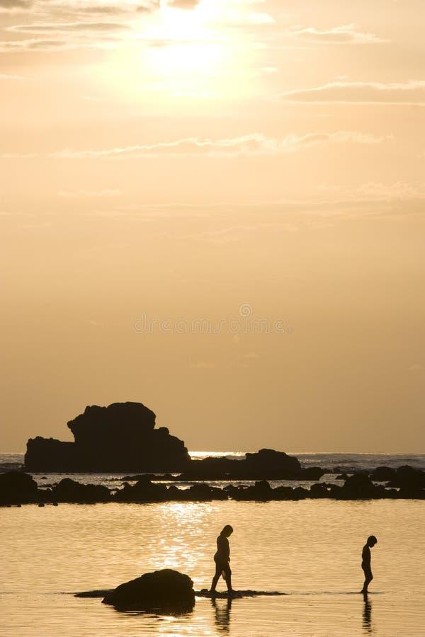 beachside silhouette arkivfoto