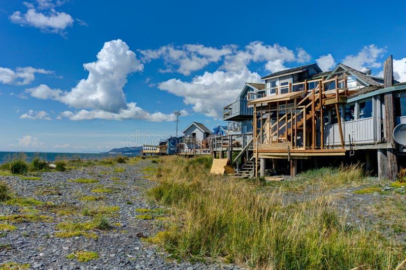 Beachview med berg och havet Homer spottar, Kenai halvöalun fotografering för bildbyråer