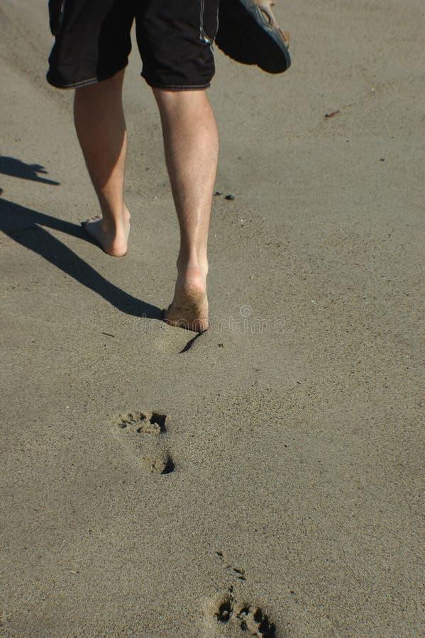 BeachWalk fotos de stock royalty free