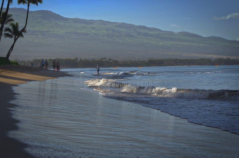Beachwalkers de Maui imagem de stock