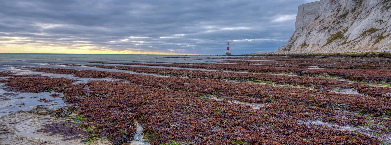 Beachy главный свет от пляжа на заходе солнца вечера осени с HDR обрабатывая, восточное Сассекс, Великобритания стоковые фотографии rf
